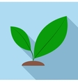 Green sprout icon flat style vector image