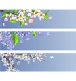 Set of blossoming branches vector | Price: 1 Credit (USD $1)