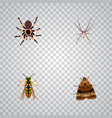 set of insect realistic symbols with arachnid vector image