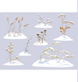 wild herbs and cereals under snow vector image vector image