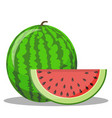 watermelon and red slice with black seeds vector image