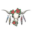 bull skull with feathers and flowers vector image vector image