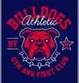 bulldog grunge emblem design vector image