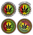 Cannabis leaf symbol jamaican flag background vector image