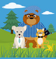cute animals on nature cartoons vector image vector image