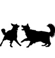 Dogs fight vector image