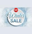 final winter sale concept banner cartoon style vector image vector image