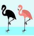 flamingo bird black silhouette flat style vector image
