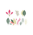 flat set of leaves of different plants vector image vector image