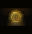golden bitcoin crypto currency icon over dark vector image vector image