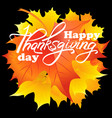 happy thanksgiving day - hand lettering greeting vector image