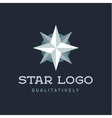 Star Polaris sharp white flat style lights twinkle vector image vector image