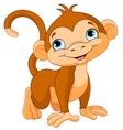 Baby monkey vector image