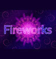 firework lilac on black vector image vector image