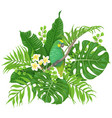green parrot and tropical plants vector image vector image