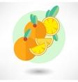 icon orange vector image
