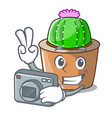 photographer cartoon star cactus in flower pot vector image