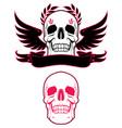 skull wings and ribbon vector image