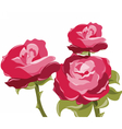 Abstract red rose background vector image vector image