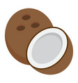 coconut flat icon fruit and tropical vector image