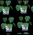 exotic seamless pattern tropical houseplant in a vector image vector image