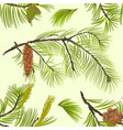 seamless texture pine branch with pinecones vector image vector image