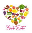 fresh organic fruits and natural berry food farm vector image