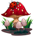 A bug crawling at the red giant mushroom vector image vector image