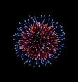 beautiful firework couple romantic salute vector image vector image