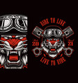 colorful biker patch with a tiger biker vector image vector image
