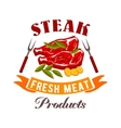 Fresh meat steak icon vector image vector image