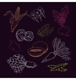 Hand drawn vegetables and hearbs collection vector image vector image
