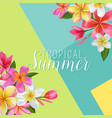 summertime floral poster tropical exotic plumeria vector image vector image