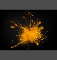 the explosion and scatter paint on a transparent vector image