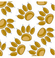 traces animal pattern vector image vector image