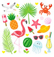 tropical summer symbols animals and plants food vector image