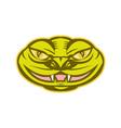 Viper Snake Serpent Head vector image vector image