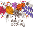 Colorful Autumn Leaves Concept vector image vector image