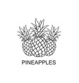 image of pineapple fruits vector image vector image