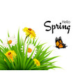nature spring background with grass flowers and vector image vector image