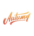 autumn modern brush hand lettering calligraphy vector image