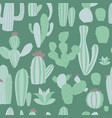cacti seamless pattern with succulen green cactus vector image