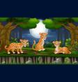 cartoon three leopard enjoying at night forest vector image vector image