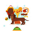dachshund care infographic concept with dog vector image