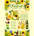 natural oil vegetable and plant ingredients vector image vector image