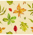 watercolor autumn seamless background with bright vector image