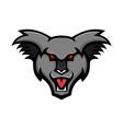 angry koala head mascot vector image vector image