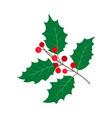 flat cartoon holly tree leaves set vector image vector image