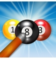 Ivories Billiard Balls Background vector image