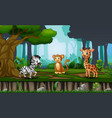 scene with many animals in jungle vector image vector image